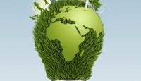 energia odnawialna w Polsce zyskuje wielu zwolenników