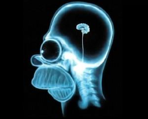 mózg gracza w gry komputerowe
