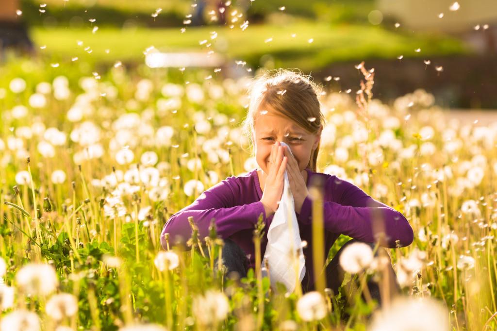 test alergiczny