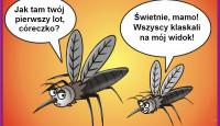 lecące komary grafika