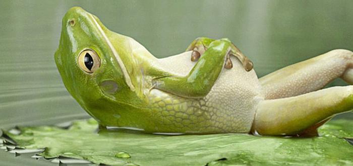 jak odpoczywać