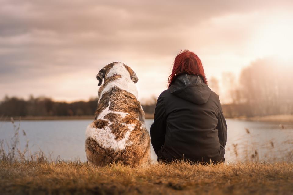 opiekun zwierząt